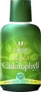 Liquid Chlorophyll (473 ml)