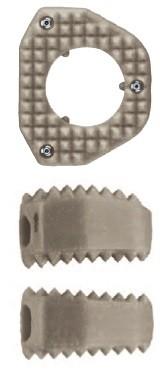 BIA, Cage vertebral cervical din PEEK