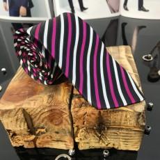 Cravata Barbati Cod: CV60