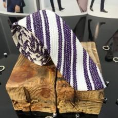 Cravata Barbati Cod: CV61