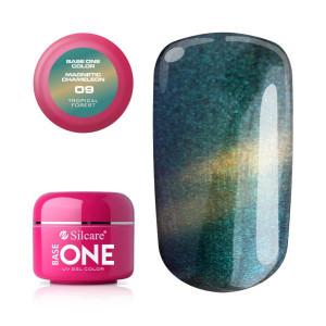 Gel UV Color Base One Silcare Magnetic Chameleon 09