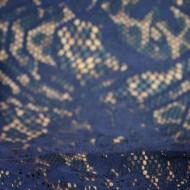 Rochie de ocazie, din dantela, bleumarin RO-707-EB