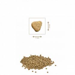 Hrana uscata pentru pisici Petkult Gourmandise 2 kg