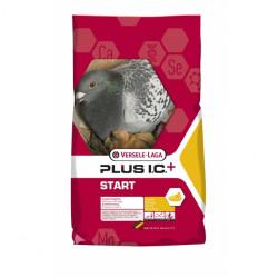 Hrana pentru porumbei, reproducere Start Plus Matca