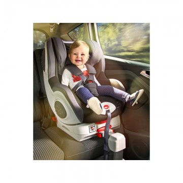 Caretero CHAMPION ISOFIX 0-18 Kg Mint