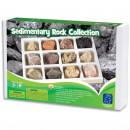Kit paleontologie - Roci sedimentare