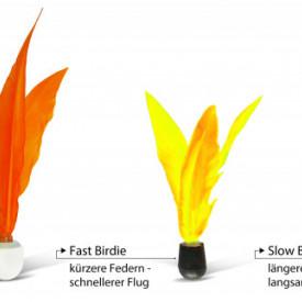Set Schildkröt Jazzminton 2 palete + fluturasi - 970155 fluturasi