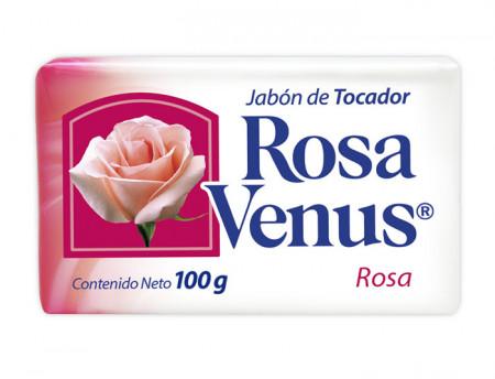 Rosa Venus rosa / Caja con 60 piezas de 100g
