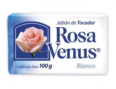 Rosa Venus blanco / Caja con 60 piezas de 100g