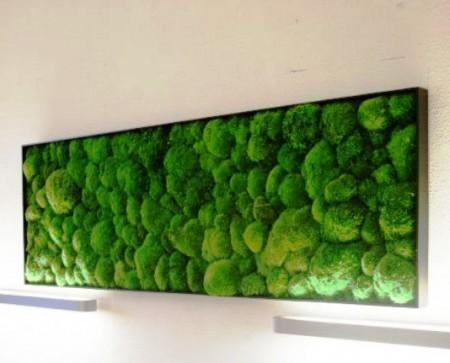 Tablou vegetal 1 din mușchi bombat natural, stabilizat - 55 cm x 25 cm