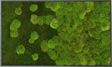 Tablou vegetal din mușchi natural plat și bombat, stabilizați, de calitate superioară - 100 cm x 60 cm