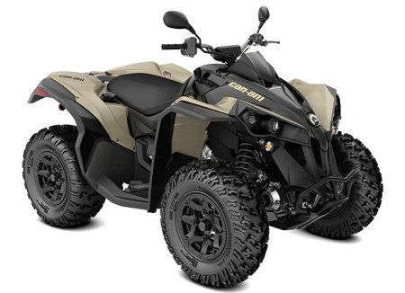 Can-Am Renegade 650 DPS T · 2021