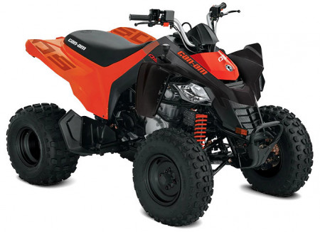 Can-Am DS 250 STD INT · 2021