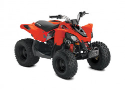 Can-Am DS 90 STD INT · 2021