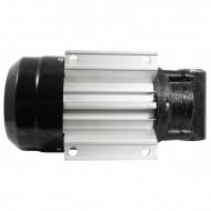 Pompa de transfer pentru uleiul de motor si motorina 230V 750W V80158