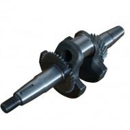 Arbore cotit motoare termice 6.5CP 20mm 20x30x25mm V60363 Verke