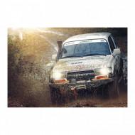 Troliu auto OFF-ROAD 12V 2.040Kg 4500 lbs PROPULLATOR 4500-A Germania