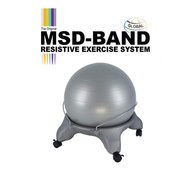 MSD Fit Ball chair with metal braces