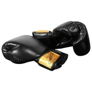 Gymstick Boxing Mitts