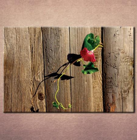 Slika na platnu Cvet 3002_ P