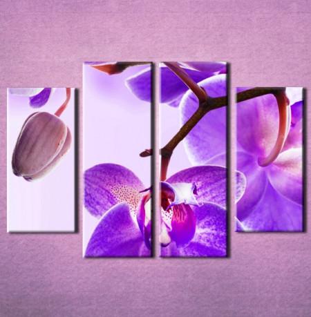 Slika na platnu Ljubicasta orhideja 3023_4