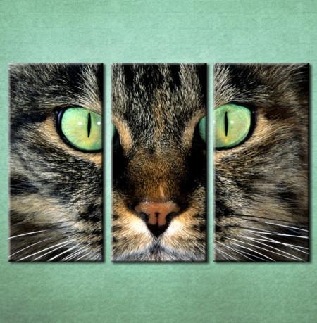 Slika na platnu Mačka Nina3045_3