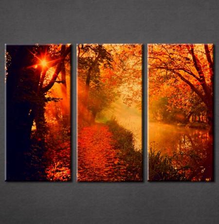Slika na platnu Šuma i jesen Nina3008-_3