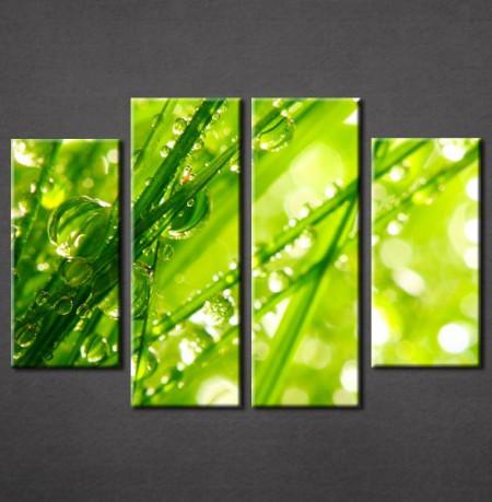 Slika na platnu Zelena trava Nina3051_4