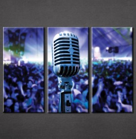 Slika na platnu Mikrofon Nina3035_3