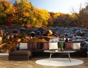 Foto tapeta Jesen u šumi Tapet080