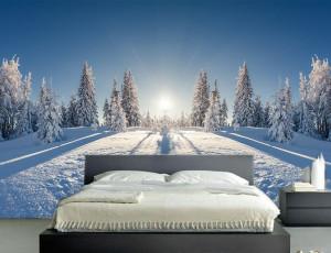 Foto tapeta Zima na planini Tapet089