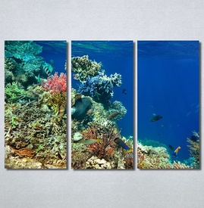 Slike na platnu Akvarijum Nina30267_3