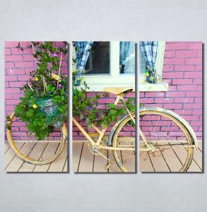 Slike na platnu Bicikl sa cvecem Nina 30214_3