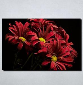 Slike na platnu Crveno cveće Nina115_P