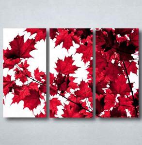 Slike na platnu Crveno lišće Nina091_3