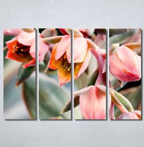 Slike na platnu Cveće Nina30274_4