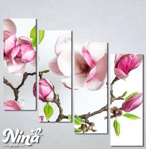 Slike na platnu Cvet magnolije Nina339_4