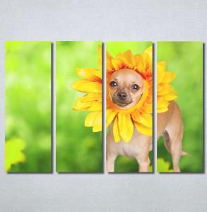 Slike na platnu Dog Nina30221_4