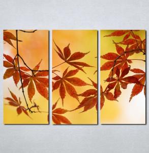 Slike na platnu Jesenji list Nina005_3