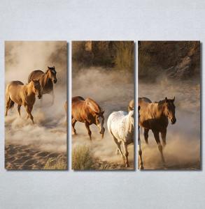 Slike na platnu Konji 2 Nina30337_3