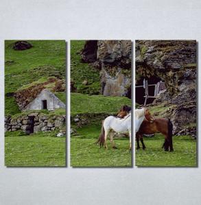 Slike na platnu Konji Nina30188_3