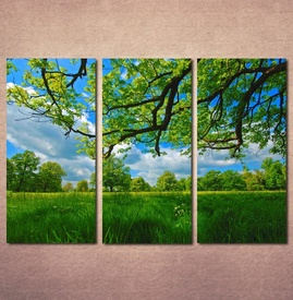 Slike na platnu Livada i krošnja drveta Nina30119_3
