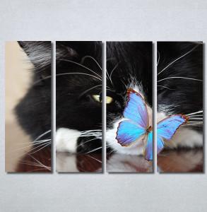 Slike na platnu Mačka i leptir Nina30250_4