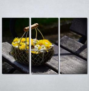 Slike na platnu Maslacak Nina206_3