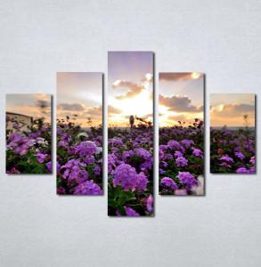 Slike na platnu Polje cveca Nina199_5