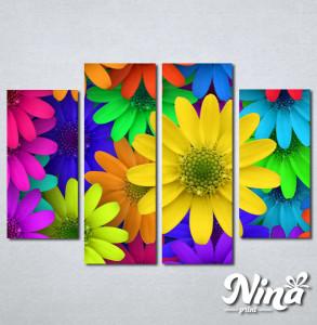 Slike na platnu Šareno cveće Nina250_4