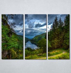 Slike na platnu Šuma i reka Nina30118_3