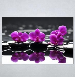 Slike na platnu Wellness spa ljubicasta orhideja Nina 183_P