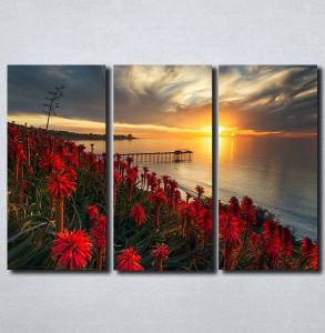 Slike na platnu Zalazak sunca i crveni cvet Nina179_3