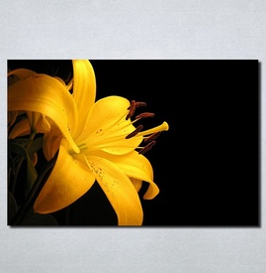 Slike na platnu Zuti cvet Nina103_P